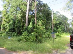 A BEAUTIFUL WOODED LOT