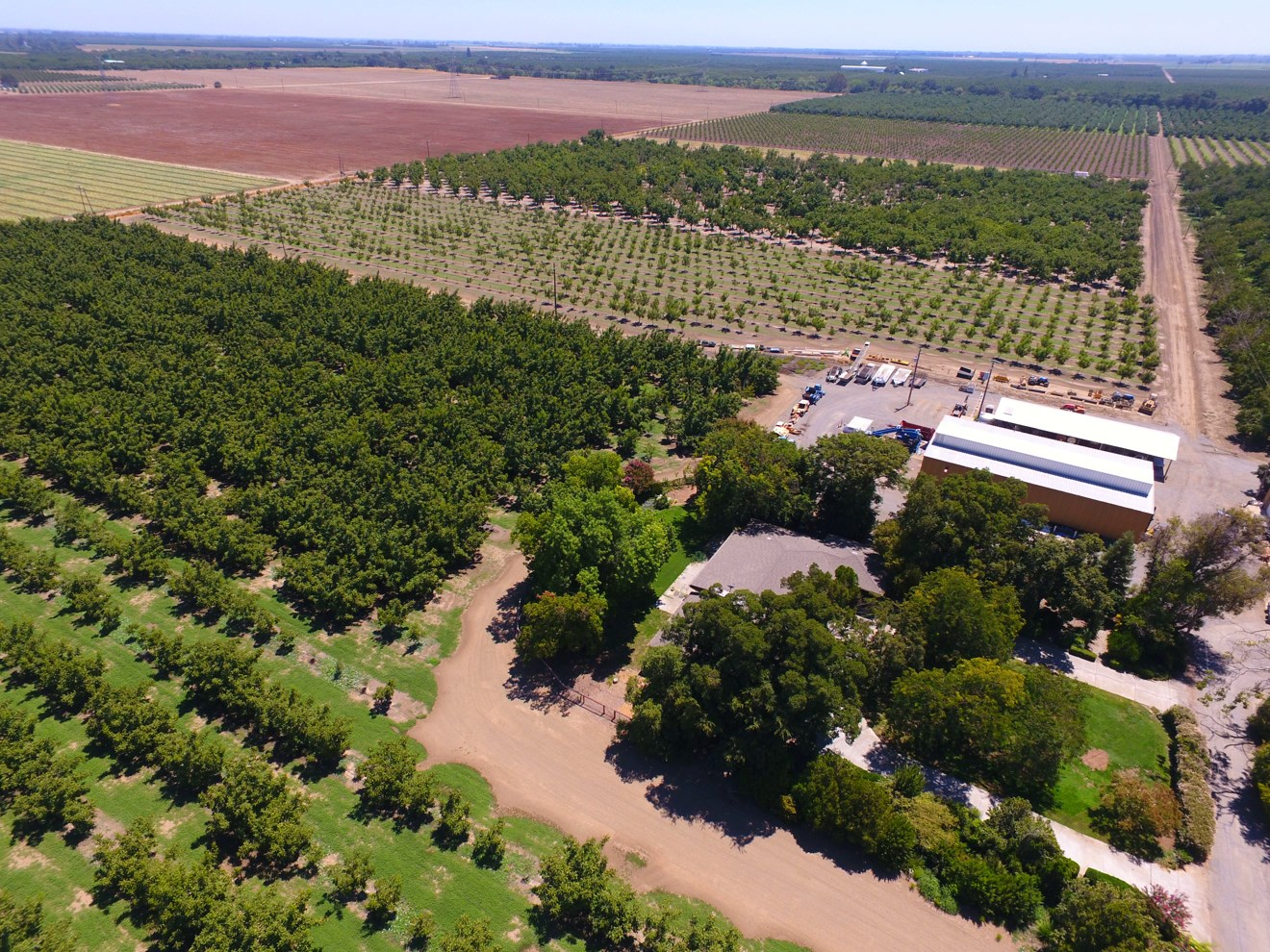 Northern California Income Producing Orchards For Sale