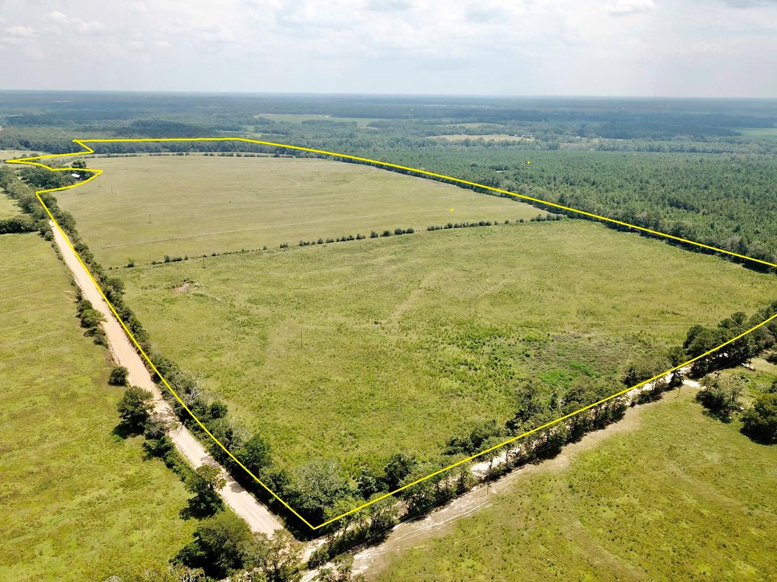 94 ac. Pasture Black Alabama Geneva County Land for Sale