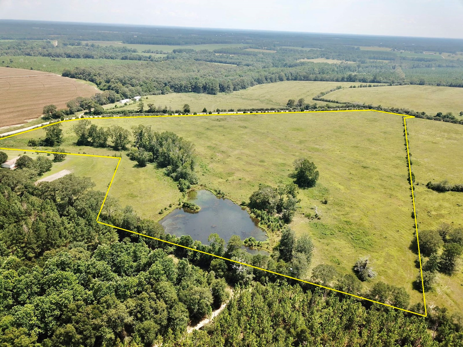 28 acre Home Site w/ a Pond - S Geneva Co - Black AL