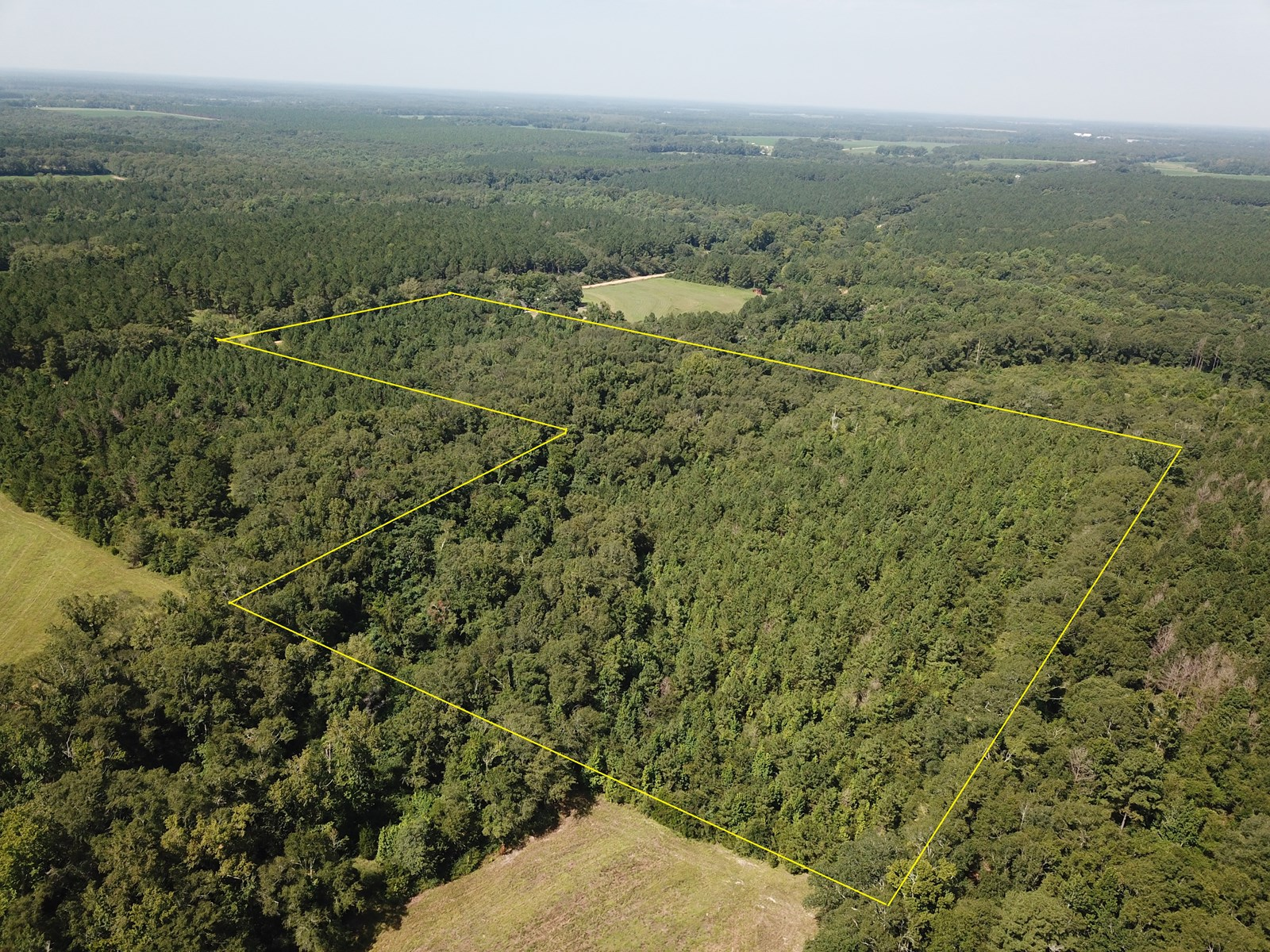 25 Acres for sale on Coe Road, Hartford, AL