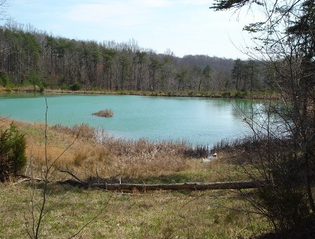 Land for Sale near Lake Cumberland, Albany, KY