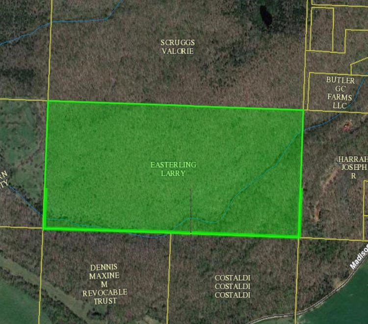 80 acres recreational land for sale, Madison County, AR