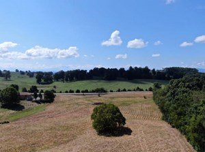 EAST TENNESSEE SMALL FARM FOR SALE KODAK TN- VANCNT LAND