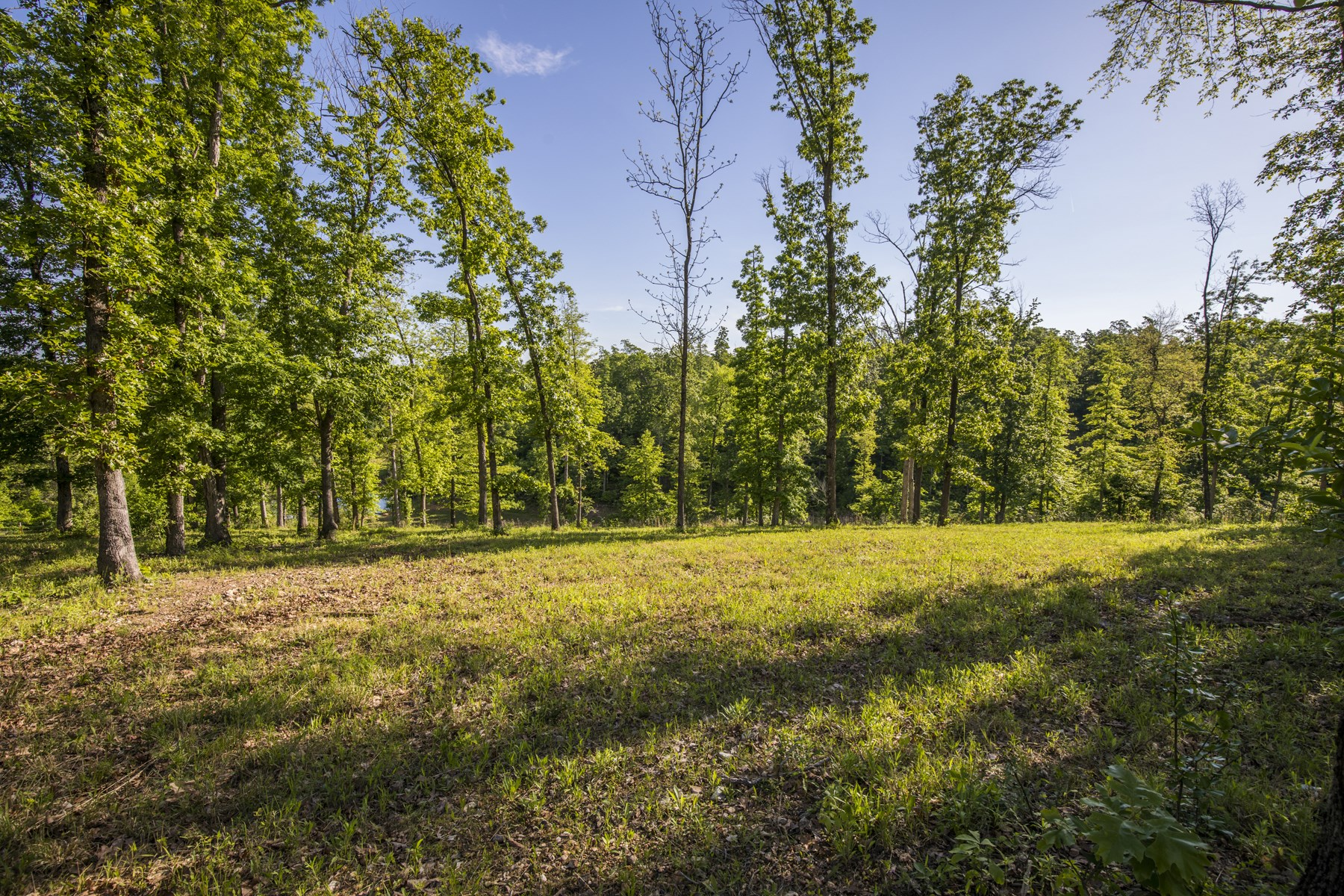 Hunting Property For Sale Located in Arkansas And Missouri