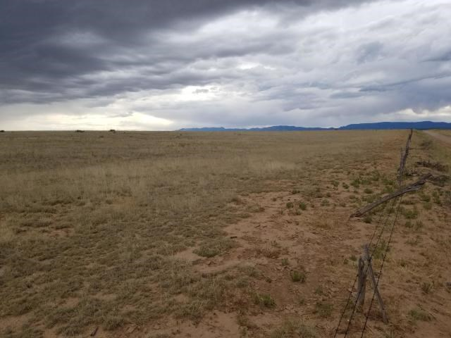 Acreage For Sale Near Estancia in Torrance County New Mexico