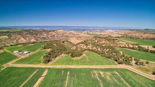 Great Investment Opportunity with 35 Acres in Montrose Co