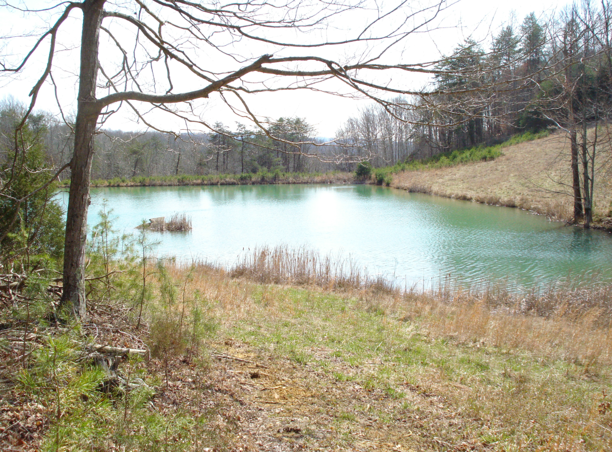 1 acres lots for sale near Lake Cumberland, Albany Kentucky