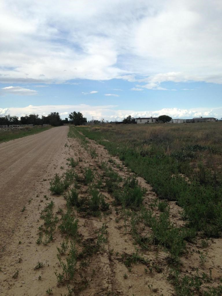 Country Home Site Acreage For Sale Moriarty NM.