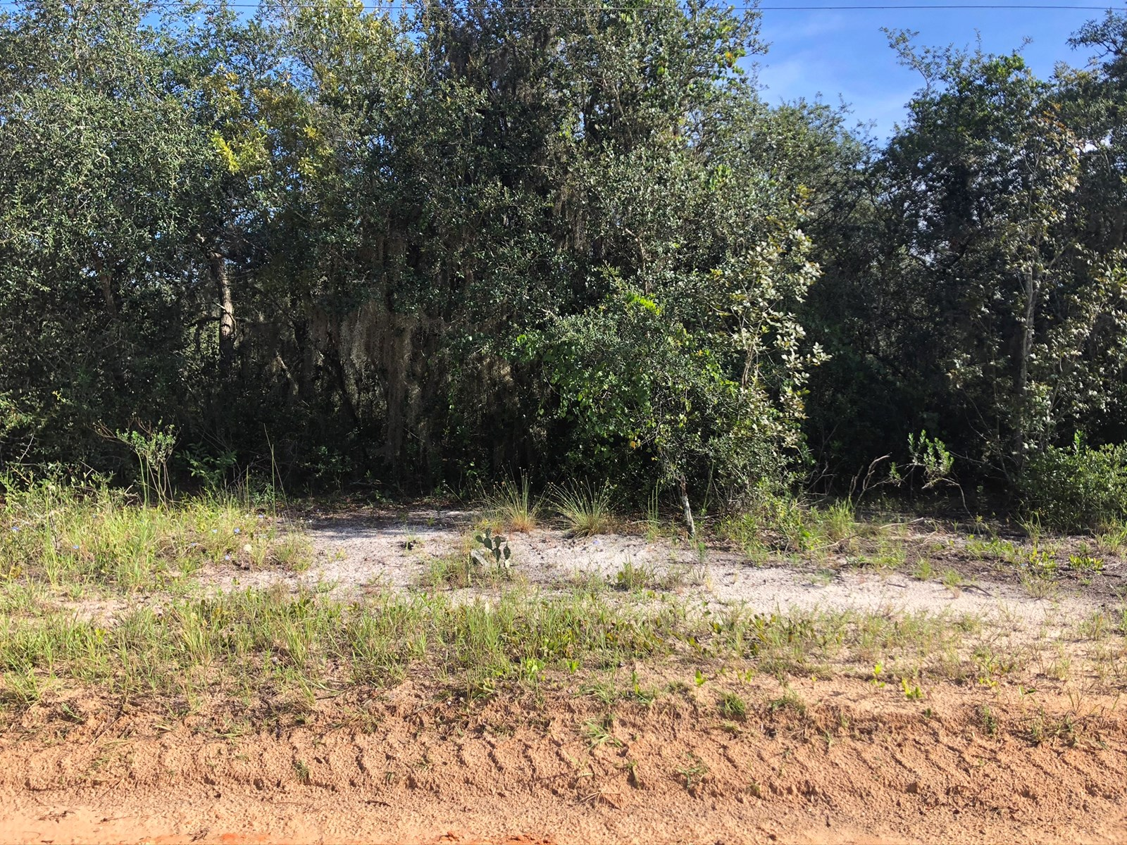 1 ACRE LOT ( 3 LOTS AVAILABLE), CENTRAL FLORIDA, LAKE PIERCE