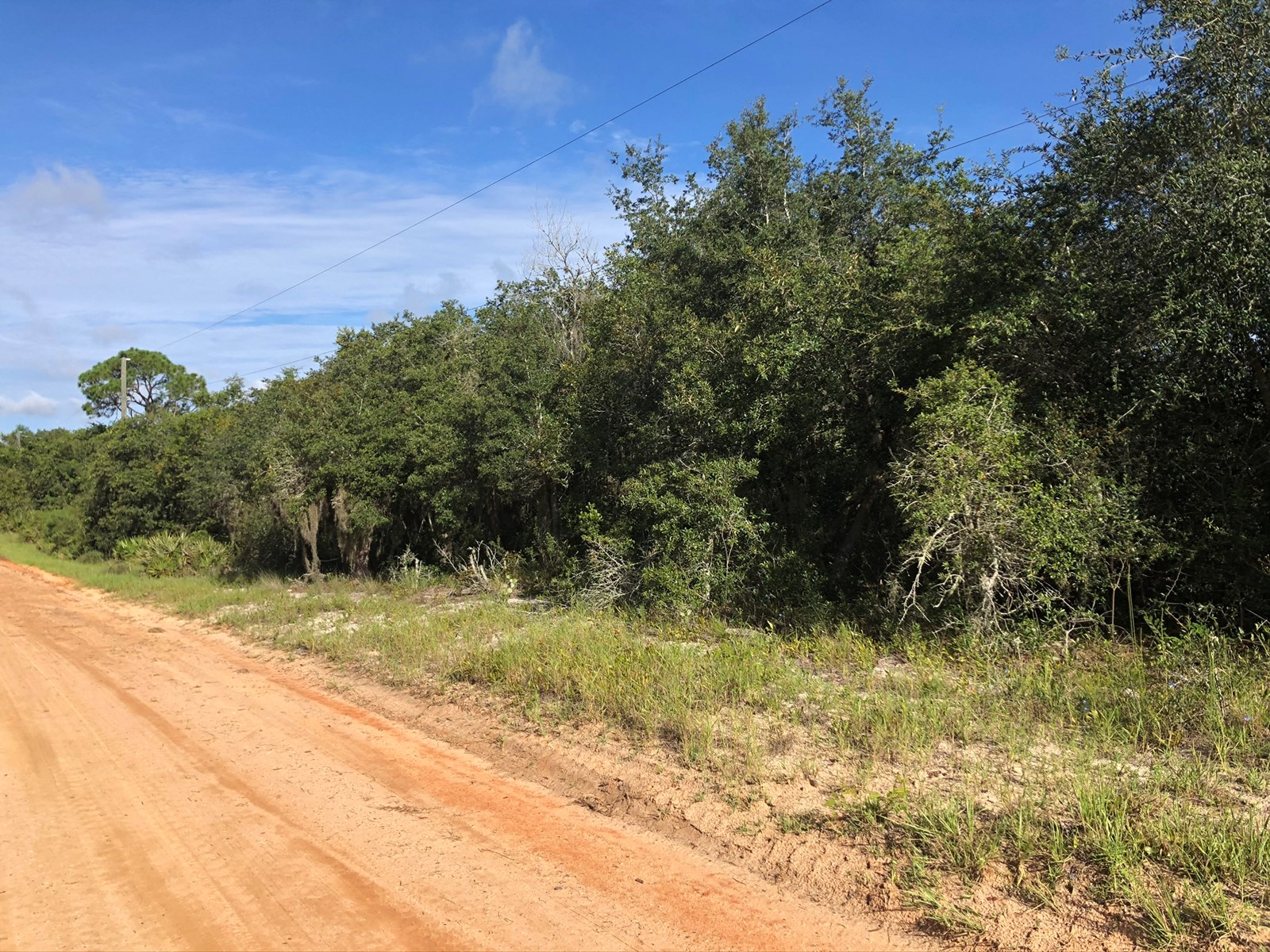 VACANT 1 ACRE LOT, 3 LOTS AVAILABLE, LAKE WALES FLORIDA