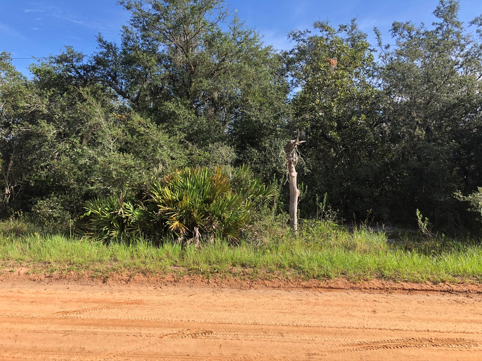 BUILD YOUR DREAM HOME, 1 ACRE LOT, 3 LOTS AVAILABLE, POLK CO