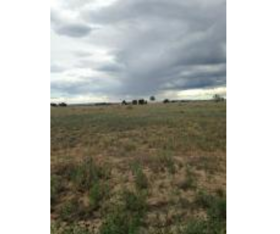 Manufactured Home Building Lot For Sale near Moriarty NM.