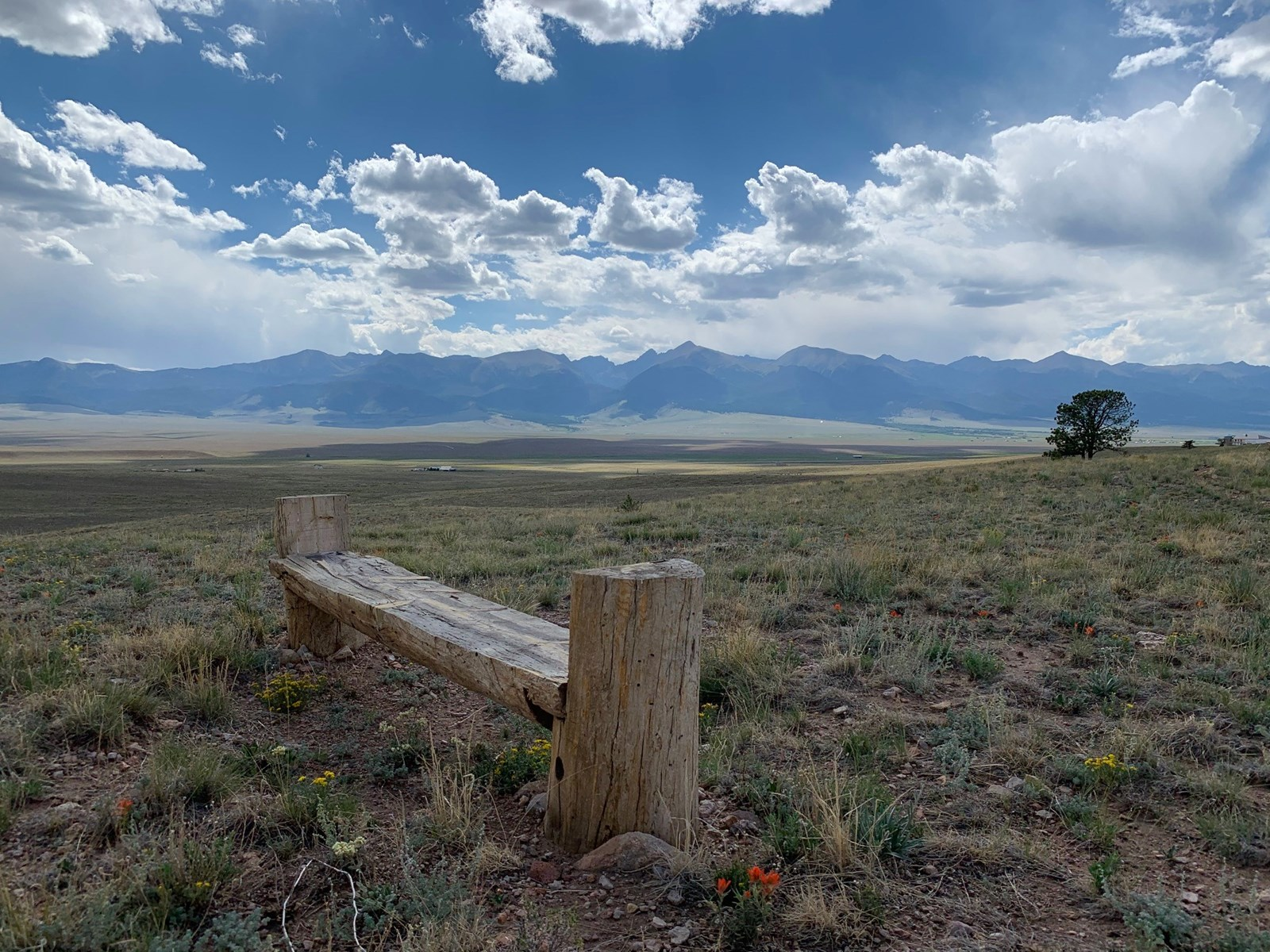 Gorgeous 36 Acre Lot with Mountain Views