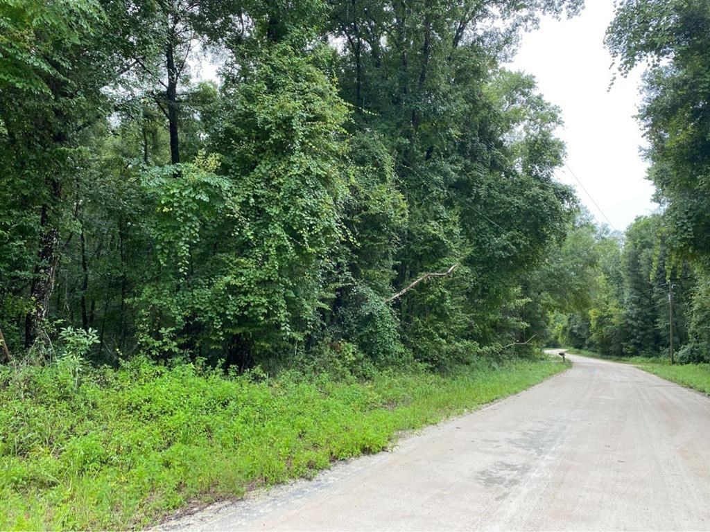 ACREAGE FOR SALE in Old Town, FL!