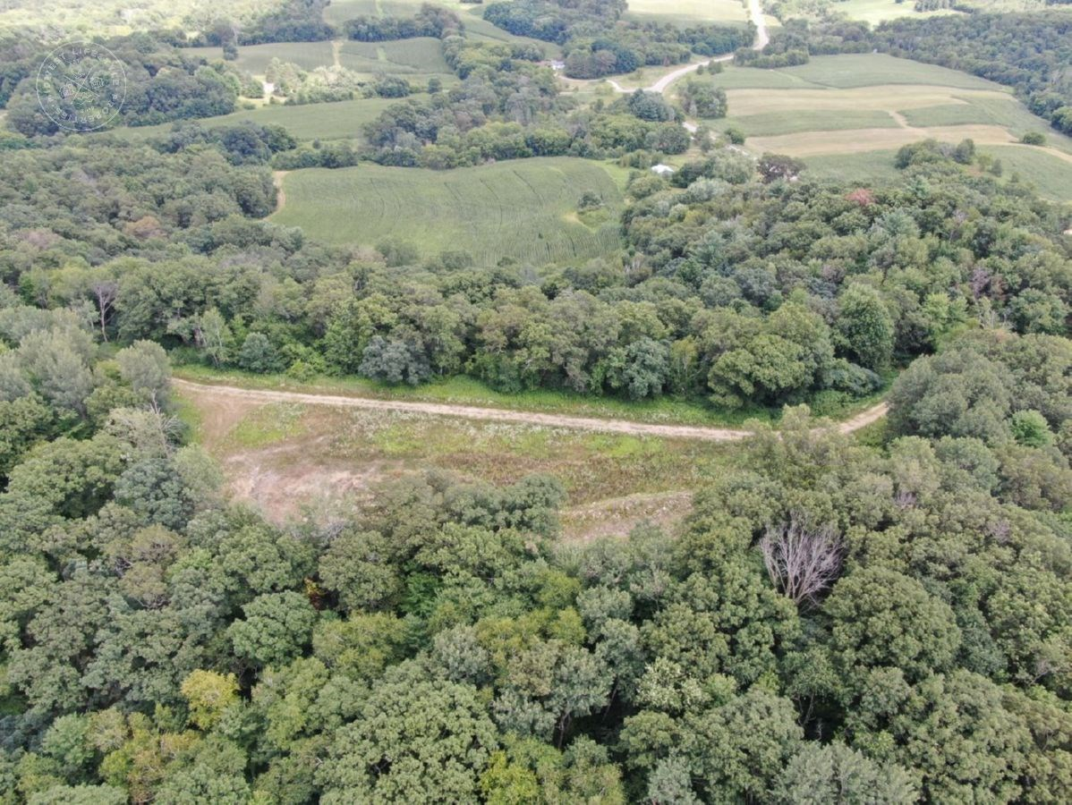 90 Acre Hunting Property in Jackson County WI