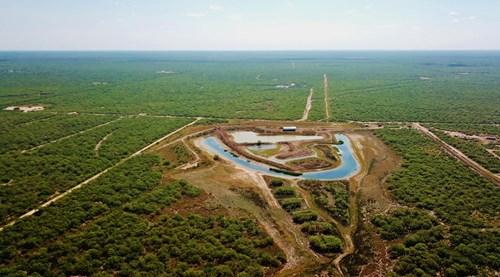 South Texas Hunting ranch