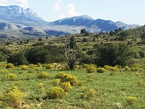 RANCH FOR SALE IN SOUTHEASTERN NEW MEXICO BROKEOFF MOUNTAINS