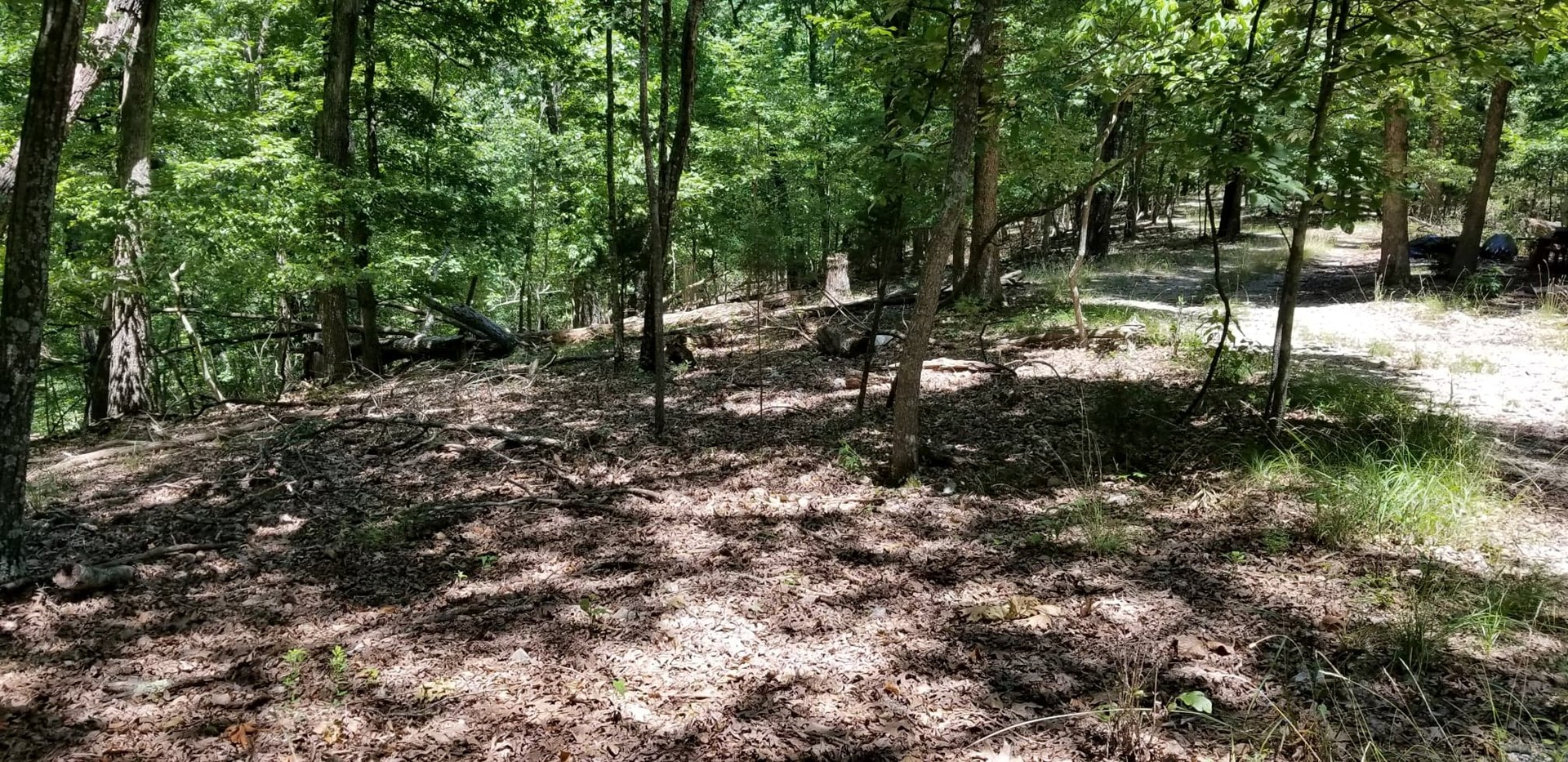 Wooded land near Eureka Springs / Beaver lake for sale