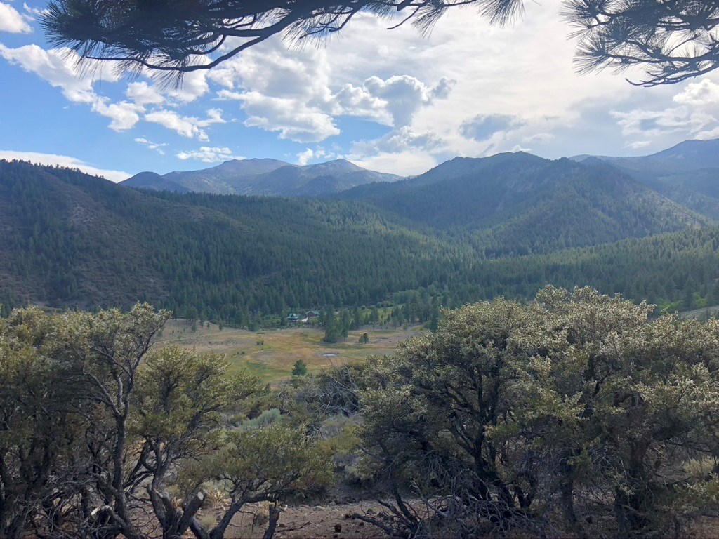 Nevada Recreational Hunting Land For Sale Public Land Forest