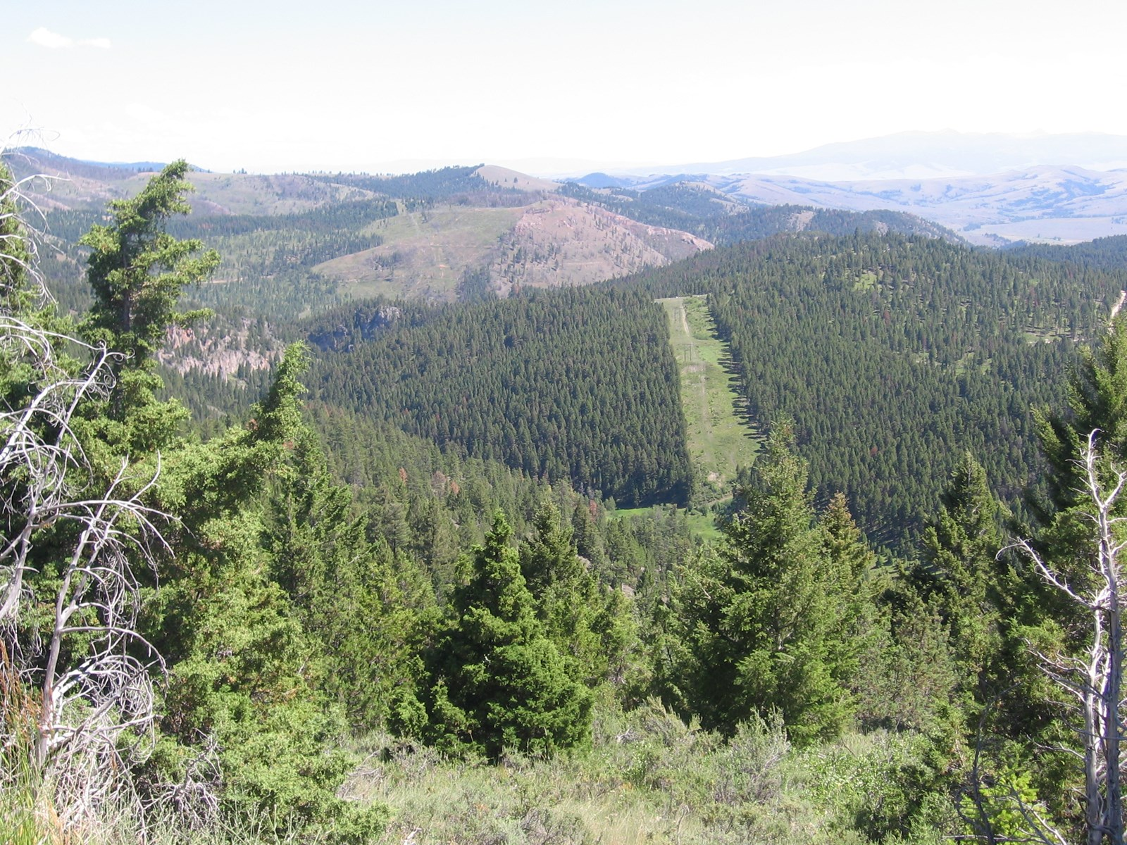 Rural Residential Acreage In Drummond Montana