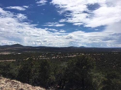 1.08 ACRE HOMESITE IN CEDAR RIDGE, LOT 66, VERNON, AZ