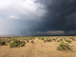 NEVADA RANCH FARM RECREATIONAL LAND FOR SALE WASHOE COUNTY