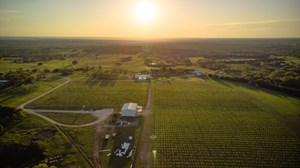 HILL COUNTRY WINERY & VINEYARD FOR SALE 150 ACRES