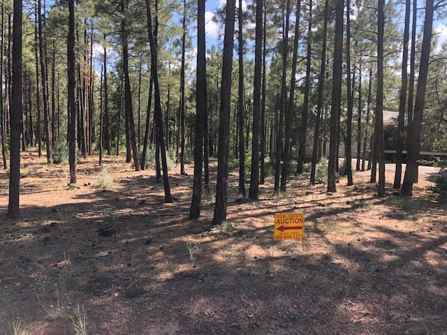 0.34-ACRE MOUNTAIN HOMESITE FOR SALE AT AUCTION, LAKESIDE AZ