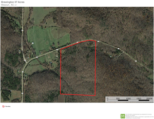 TIMBER PROPERTY 57 ACRES
