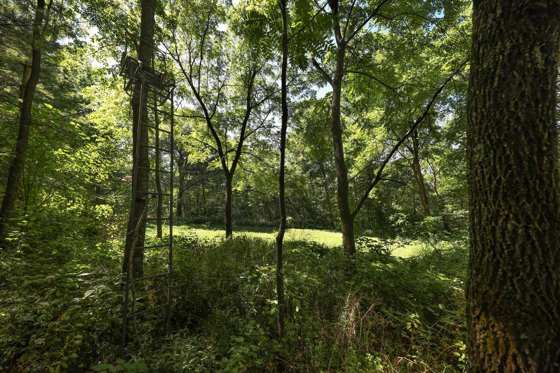 Land For Sale in Southwest Wisconsin