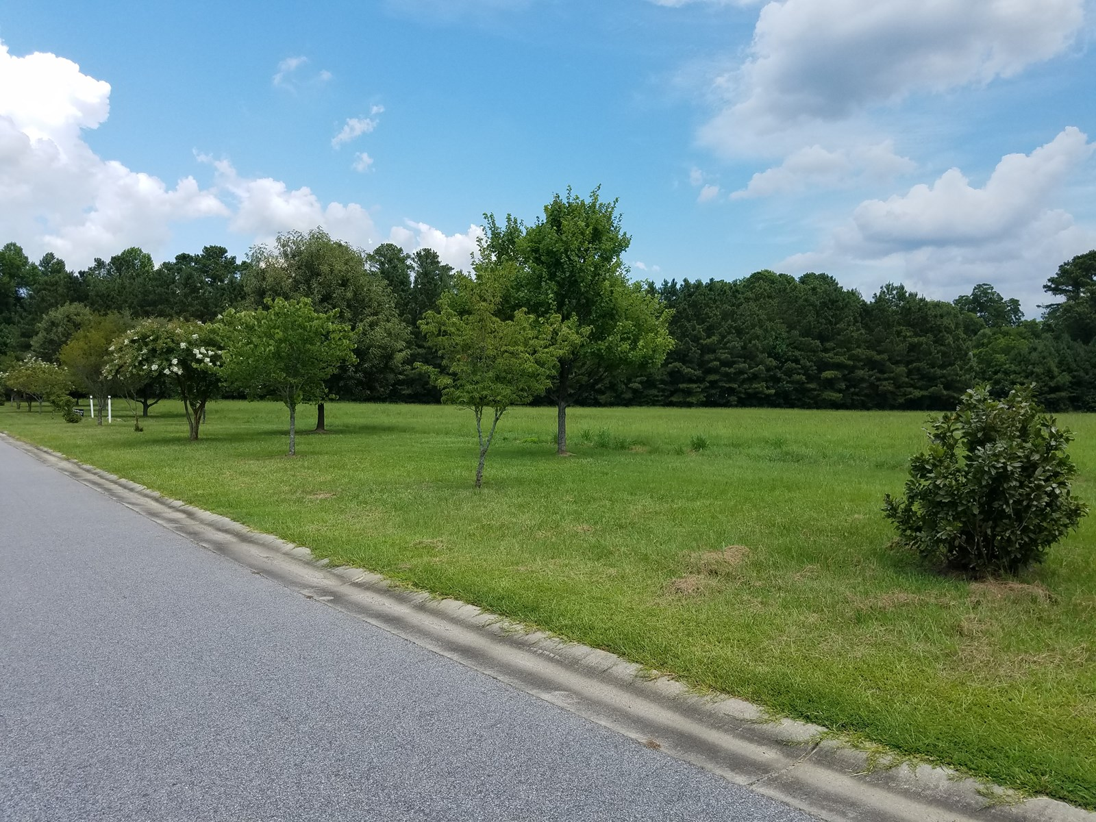 Land For Sale in Eastern NC