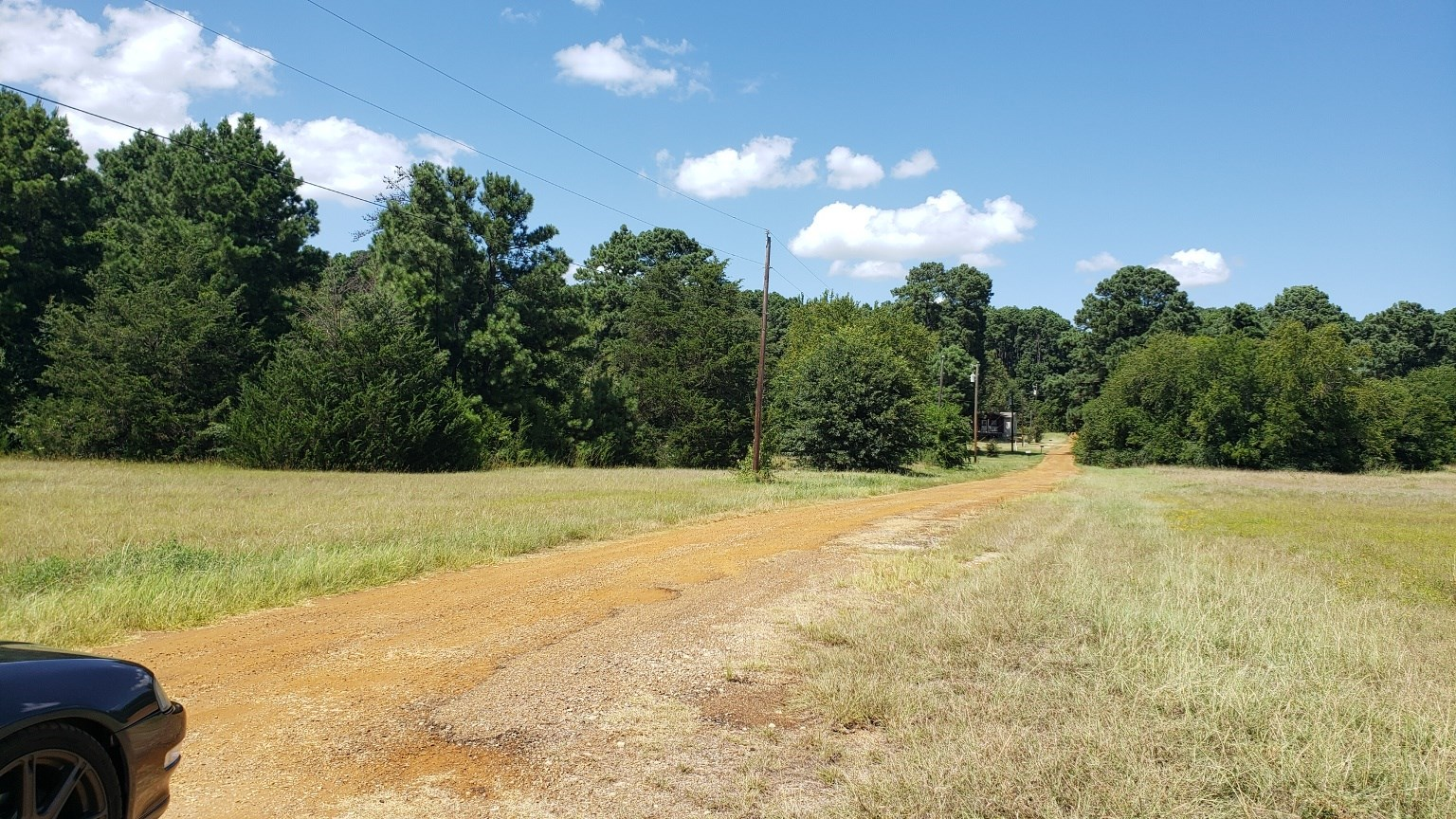 VACANT LOT FOR SALE IN LAKE PALESTINE COMMUNITY | EAST TX