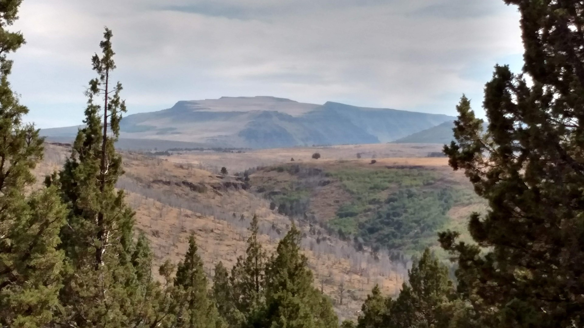 MCCOY CREEK ACREAGE - STEENS MOUNTAIN HIDDEN GEM!