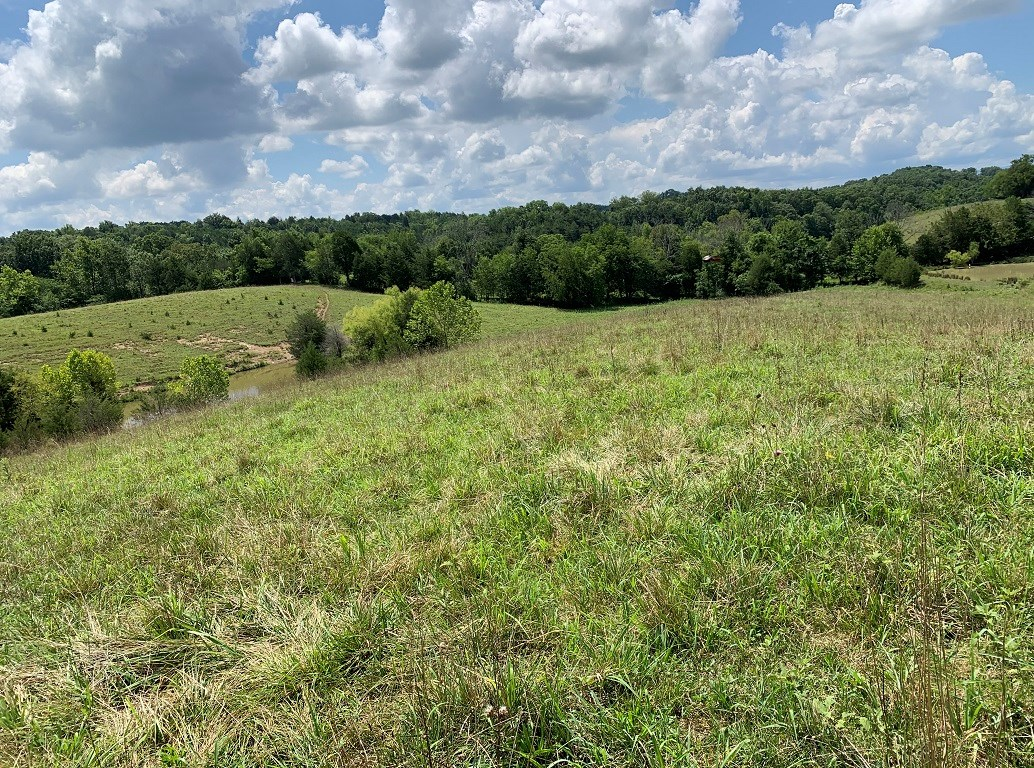 East Tennessee Mini Farm For Sale In Cocke County, TN 37821