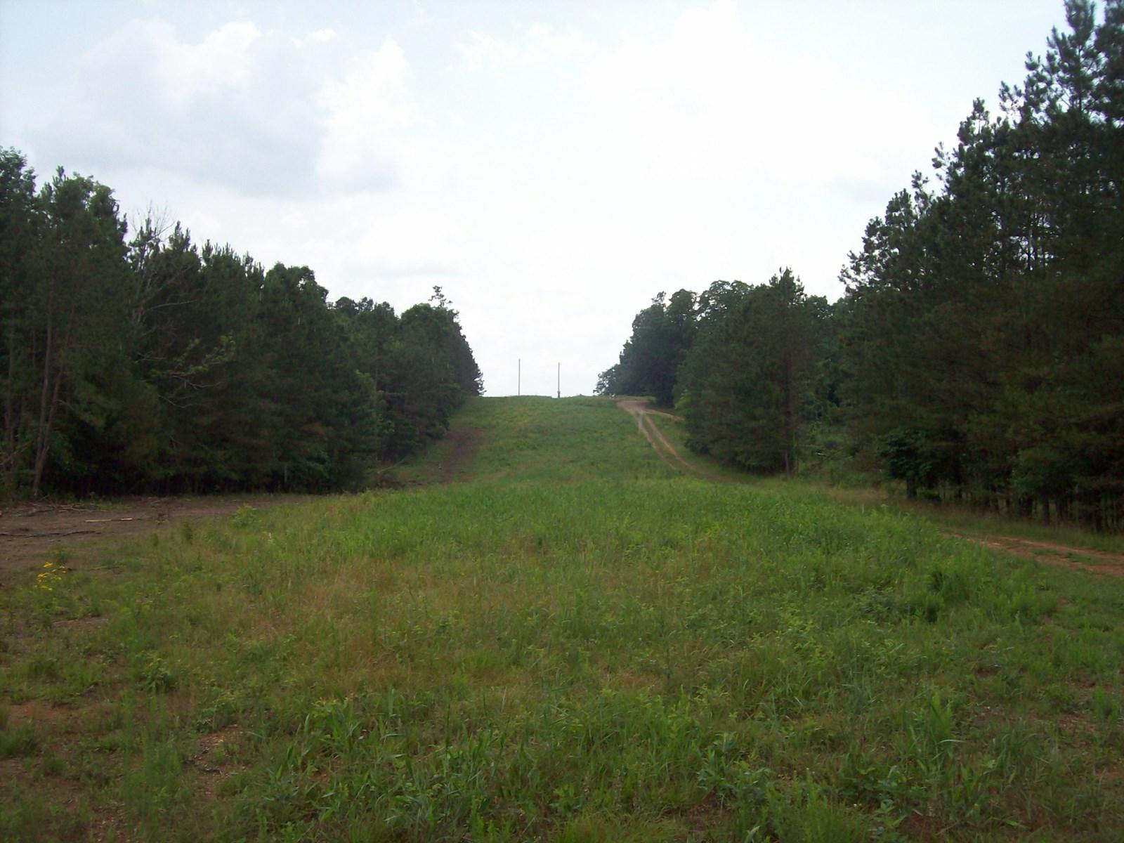 Land in Centerville, TN.