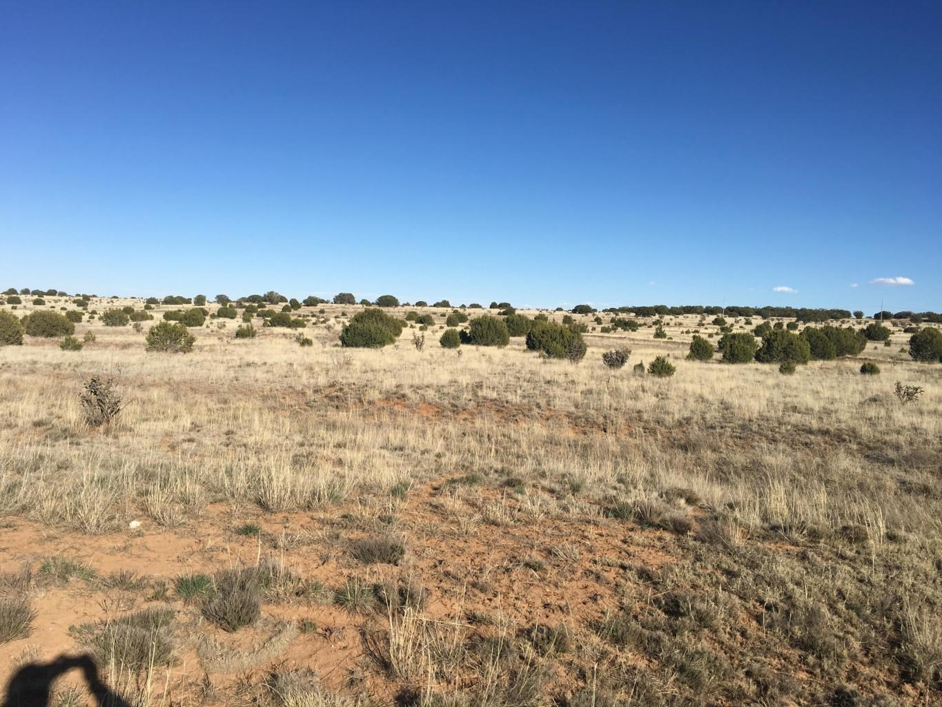 Land For Sale Central New Mexico Mission Hills Subdivision