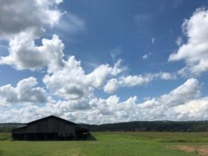 RIVERFRONT FARM FOR SALE IN ROGERSVILLE, TN-HAWKINS COUNTY