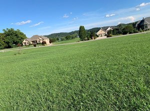 EAST TENNESSEE CHEROKEE LAKE VIEW LOT FOR SALE HAWKINS COUNT