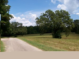 TENNESSEE LAND FOR SALE NEAR PICKWICK LAKE, UNRESTRICTED