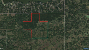 240 ACRE TIMBER AND HUNTING PROPERTY FOR SALE IN CENTRAL WI