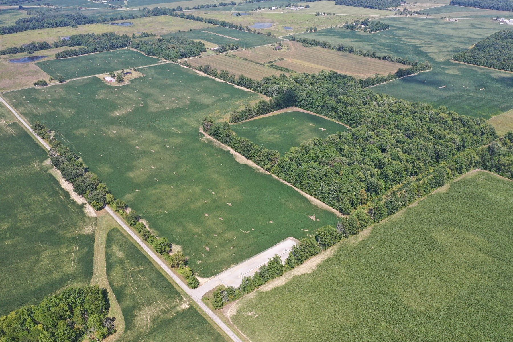 Collins Estate Auction - 240 Acres +/- Farmland
