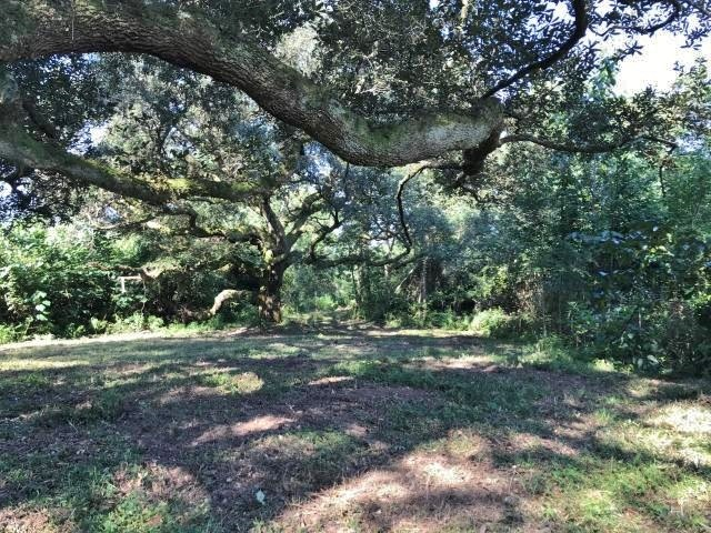 53 Acres Hunting Land for Sale Pearl River County, MS