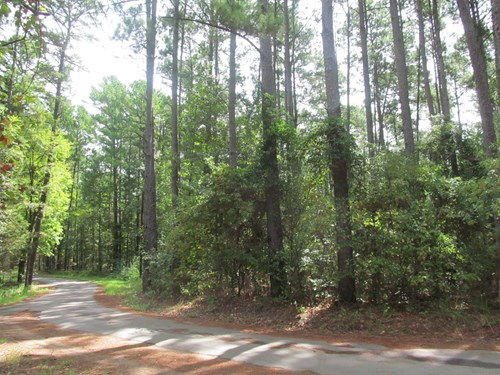 OVER 1 ACRE EAST TEXAS   RESIDENTIAL   LAND WOOD COUNTY, TX