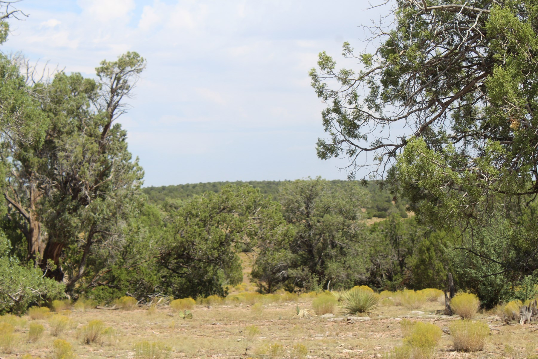 PENDING  Big Views, Accessible and No HOA Land in Arizona