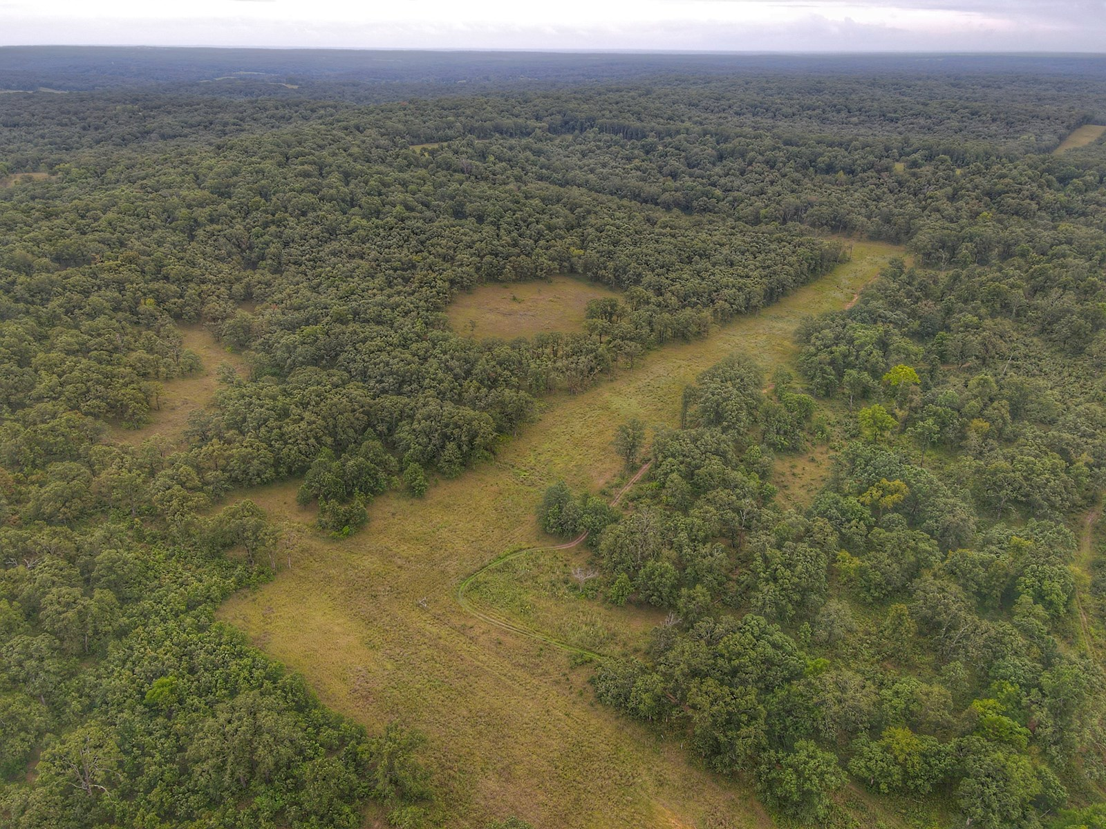 Land for Sale Benton County Missouri 80+/-ac