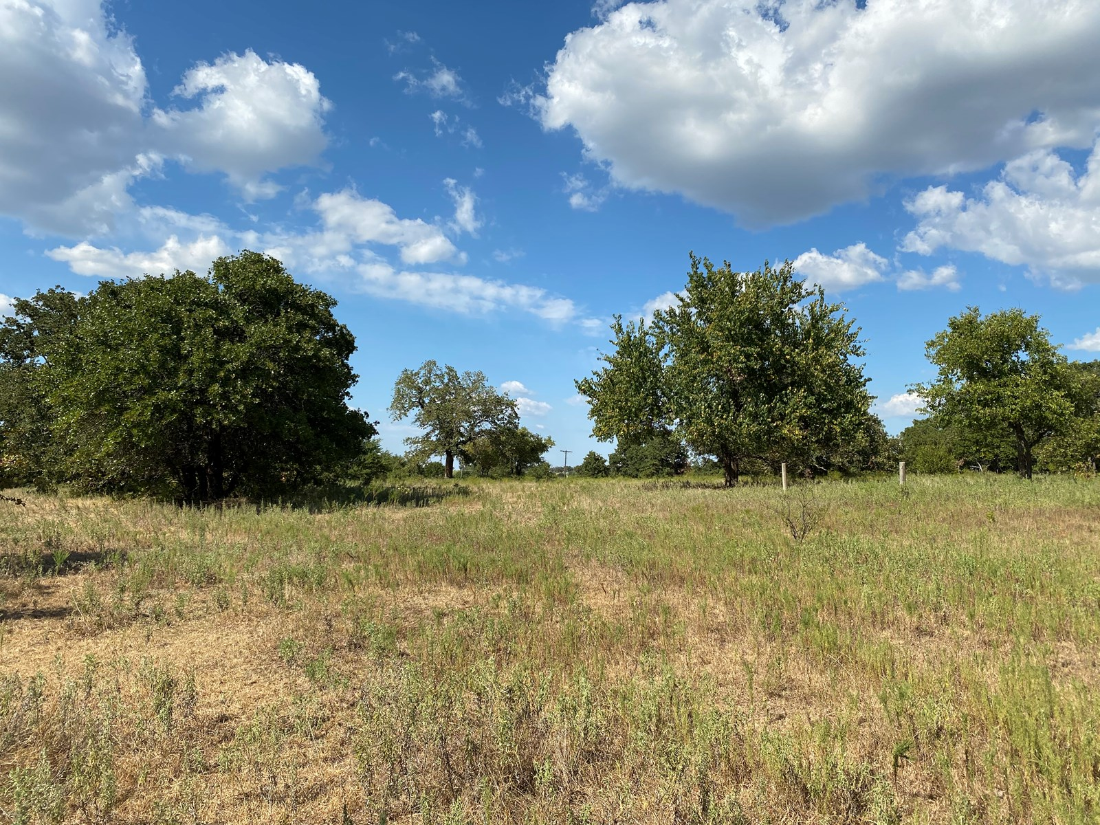 Oklahoma Hunting Land For Sale / Land in Carter County