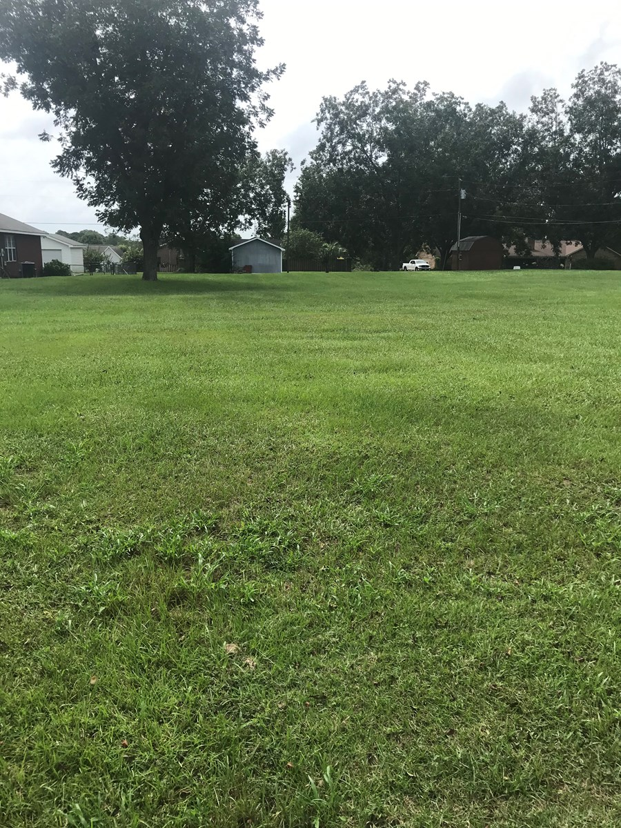 Residential Lot For Sale Houston County, Alabama