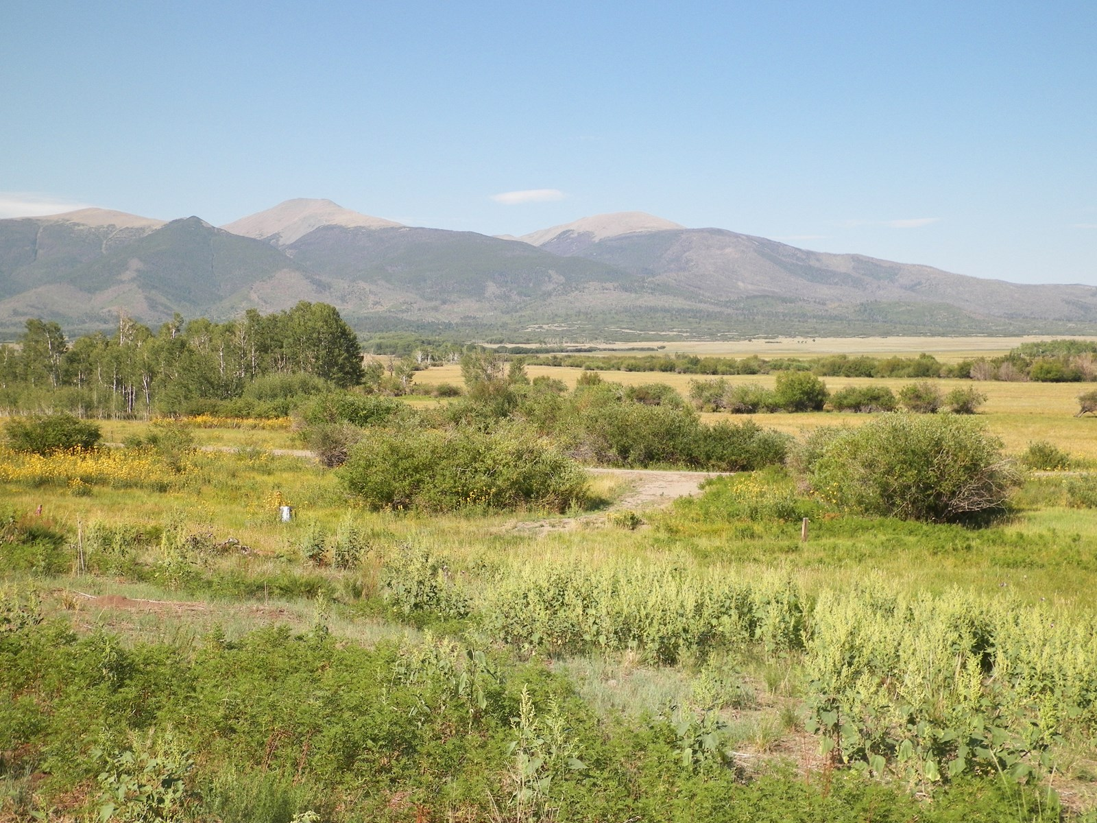 For Sale Ranch CO Mountain Views Sangre de Cristo Streams