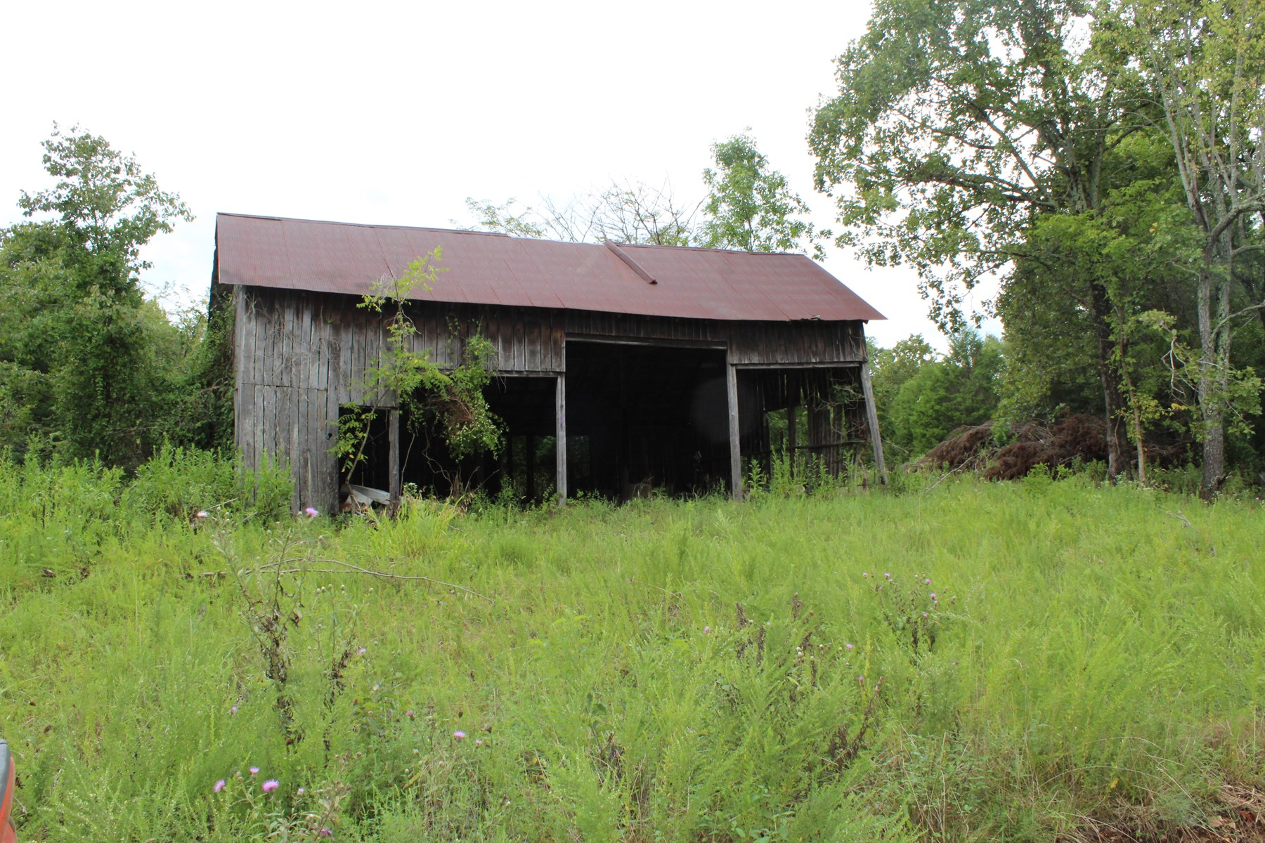 Southern Missouri Land for Sale - Off Grid - Hunting